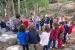 Escoltant els secrets d'un bosc
